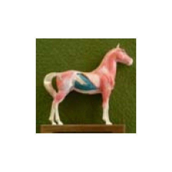 AKU-kôň