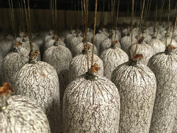 Pikantní rostlinná vegan uzenina - Maďarská klobaňa čípoš
